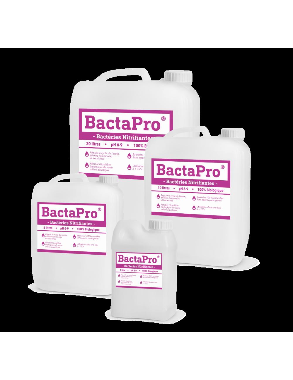 bactérie nitrifiante - BactaPro®