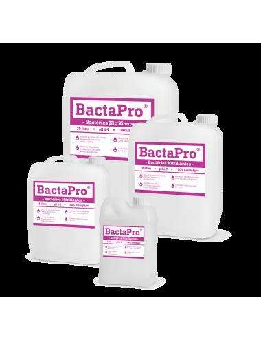 Bactéries Nitrifiantes - BactaPro®